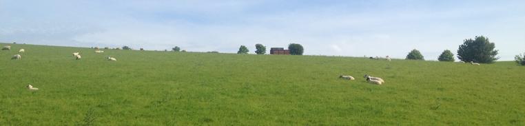 gren-hills-England